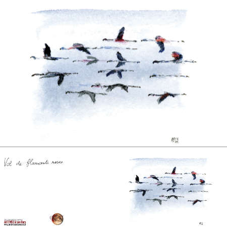 Vol de flamants • double
