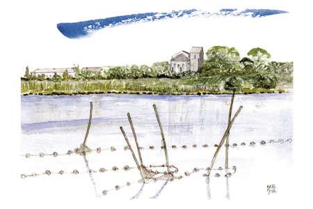 Maguelone, étang et filets