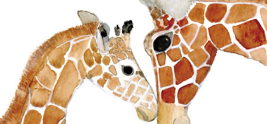 Slider-girafes_860x400