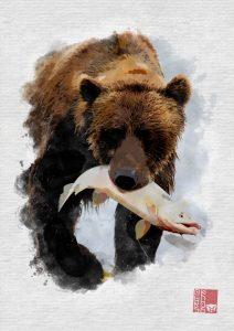Grizzli pêcheur